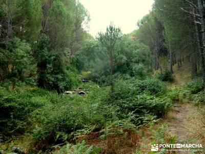 Paseo y Baño por el Valle y Río Tiétar;puente de san isidro senderismo trekking viajes puente san
